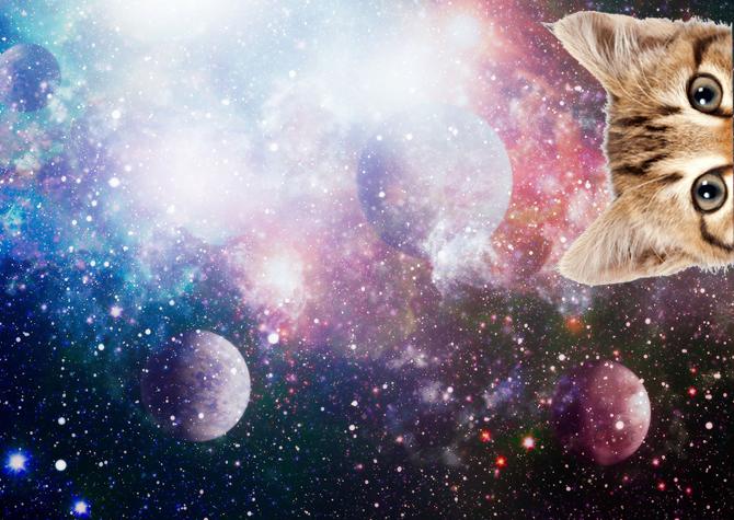 Astrolog Gahl Sasson'dan 2019'a İlişkin İpuçları!
