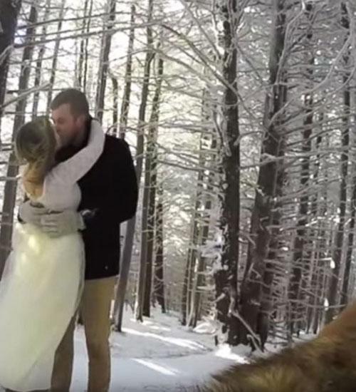 Düğün Kayıtlarını Köpekleri Yaptı