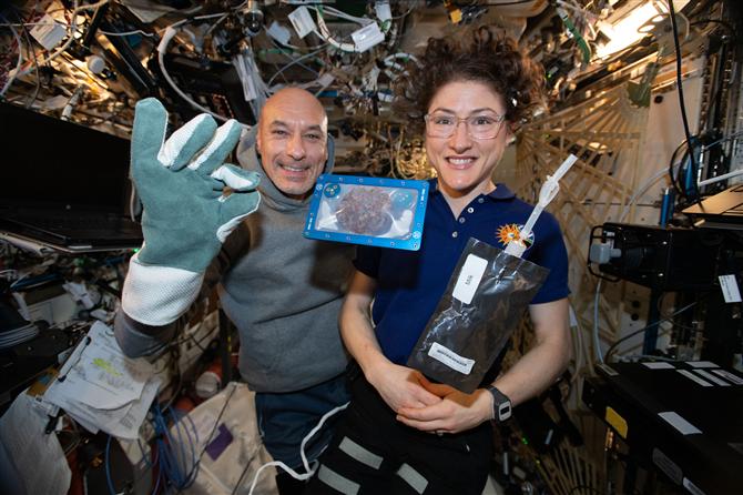 Ünlü DoubleTree Çikolatalı Kurabiye Uzayda Pişen İlk Yiyecek Oldu