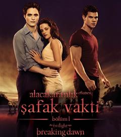 18 Kasım 2011 Haftası Filmleri