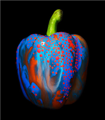 Artistik Meyveler