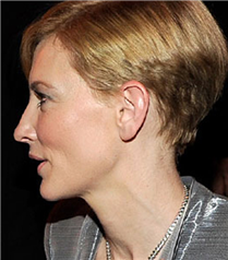 Cate Blanchett kesimi isteyen?