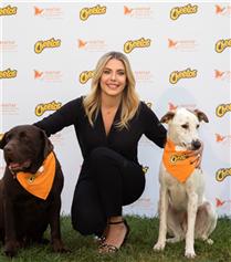 Cheetos ve Haytap'tan Sokak Hayvanları İçin İş Birliği