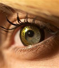 Christian Dior logolu lensler