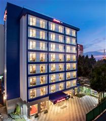 Hilton'dan, Türkiye'de Köpeğinizle Konaklayabileceğiniz Beş Otel