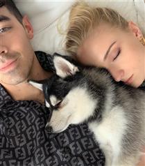 Joe Jonas ve Sophie Turner'dan Kaybettikleri Köpeklerinin Anısına Dövme