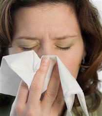 Keçi değil mevsimsel grip