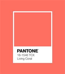 Pantone 2019 Yılının Rengini Kırmızı Canlı Mercan Olarak Açıkladı!