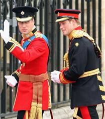 Prens William salona geldi