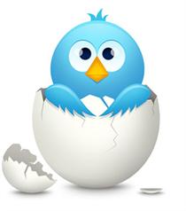 Twitter'dan Yumurta Hesaplara Değişiklik