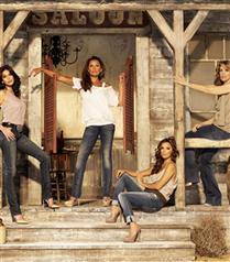 Vanessa Williams Desperate Housewives`da