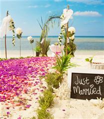 Yeni Trend: Kumsalda Düğün