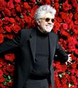 Cannes Jüri Başkanı Pedro Almadovar Oldu