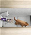 Dyson Mühendislerinden Evcil Hayvan Sahiplerine Temizlik İpuçları