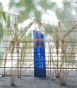 Özgürlük Rüzgarları Yeniden Esiyor: Kenzo Homme Eau de Toilette Intense