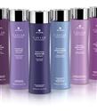 Saç Bakımının Premium Markalarından ALTERNA Şimdi Türkiye'de