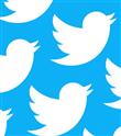 Twitter Trollerle Mücadeleye Başlıyor