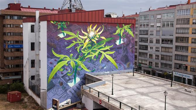 Bulunduğu Şehre Çiçek Açtıran Duvarlar - Bulunduğu Şehre Çiçek Açtıran Duvarlar