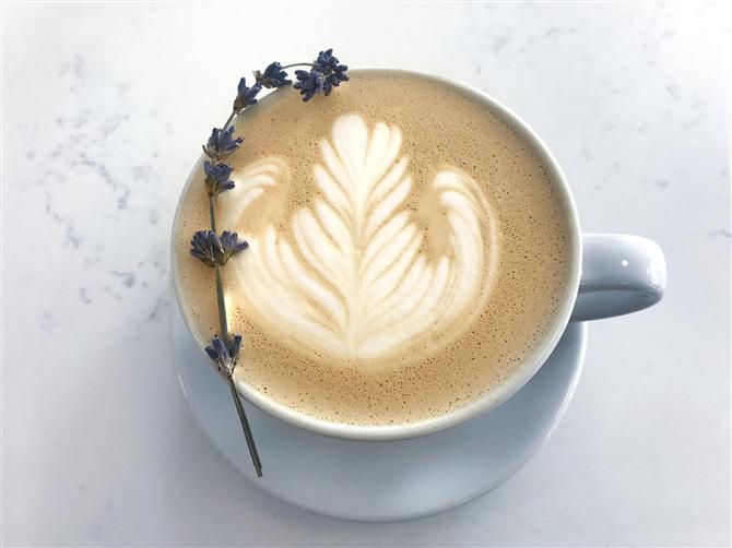 Oğlak - Burcunuza Göre Kahve Önerileri