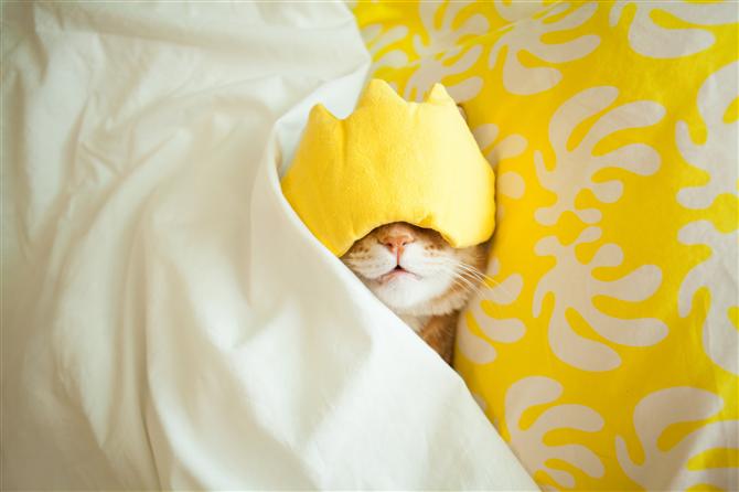Uyku Düzenimize Dikkat Etmeliyiz