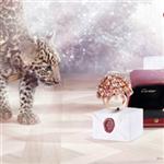 Cartier yılbaşı kampanyası