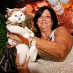 kedi-showlari