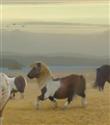 Dans eden pony`ler rekor kırıyor