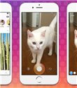 Instagram ve WhatsApp Fark Atıyor