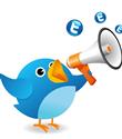 Twitter`da ön izleme özelliği nasıl kapatılıyor?
